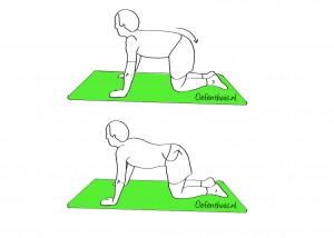 Si-gewricht en onderrug mobiliseren in kruipstand bij mensen met lage rugklachten