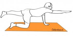 Rugpijn bovenrug oefeningen